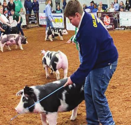 FFA and 4-H Livestock winners